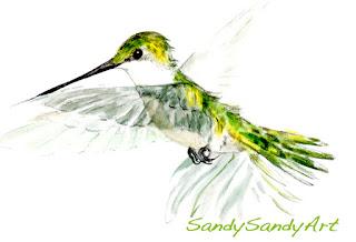 https://www.sandysandyfineart.com/store/p73/Matted_Hummingbird_Print_-_E.html