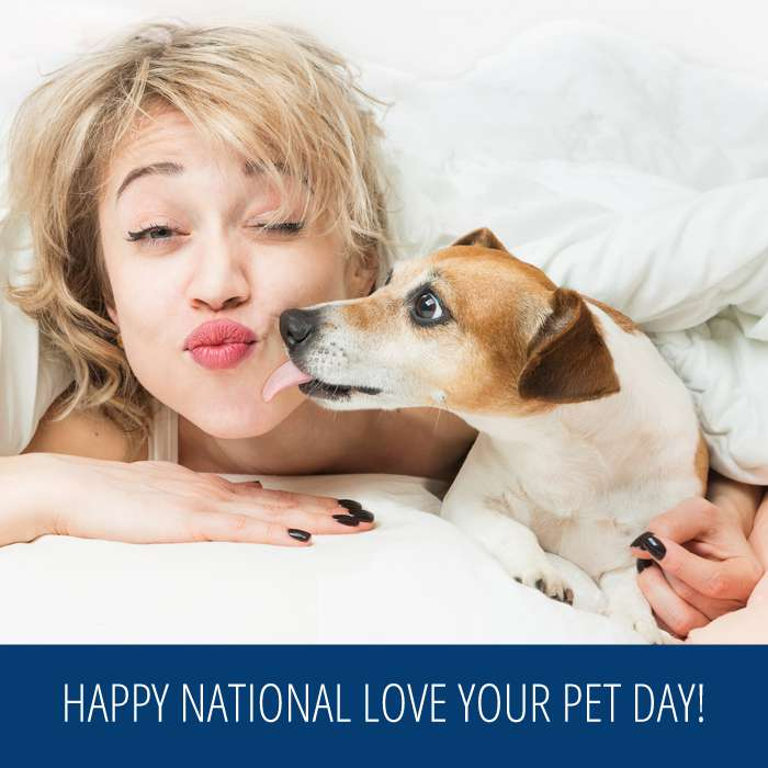 National Love Your Pet Day Wishes Photos