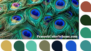 peacock color scheme, peacock color palette