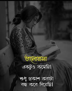 22+ বাংলার সেরা What's app Status | Best Bengali What's app Status | Bangla Facebook Status