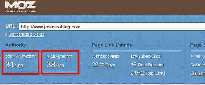 Cara Mudah Meningkatkan Domain Authority Page Authority