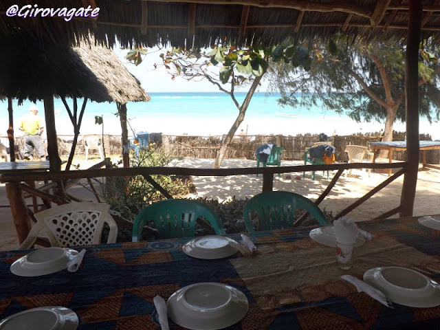 escursione delfini Zanzibar Kizimkazi