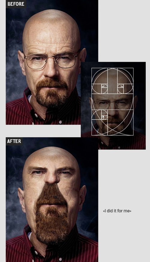 01-Walter-White-Igor-Kochmala-Plastic-Surgery-using-the Fibonacci-Sequence-www-designstack-co