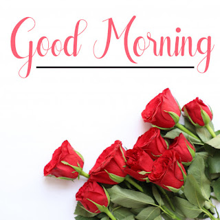 Good Morning Royal Images Download for Whatsapp Facebook87