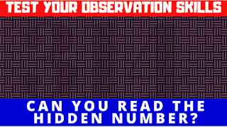 Test your Observational skills by reading the hidden numbers.