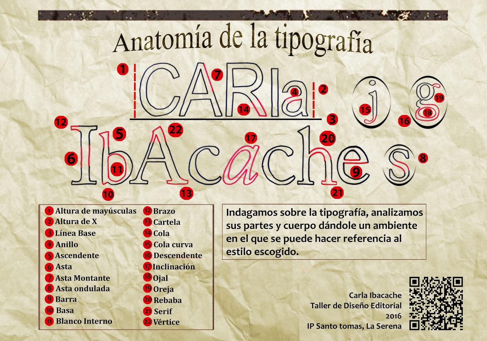 Carla Ibacache: Proyecto Anatomía de la tipografía