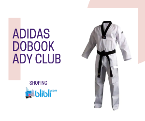 dobook taekwondo