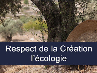 RESPECT DE LA CREATION - ECOLOGIE