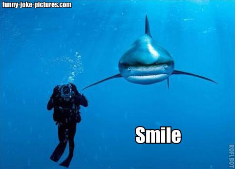 Shark lurking behind diver