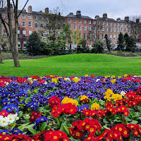 Photos of Dublin Parks: Merrion Square