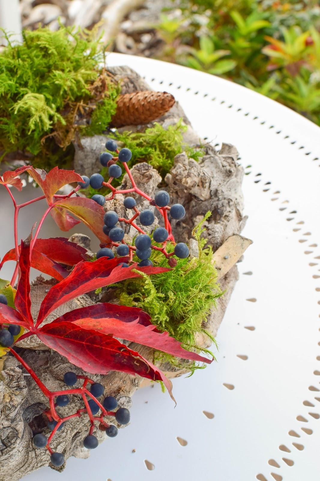 3 Ideen für DIY Kränze für den Herbst: selbermachen Holzkranz Naturdeko Weinrebe Tannenzapfen Moos Eichenlaub