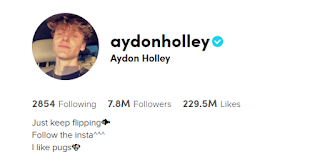 Aydon Holley TikTok