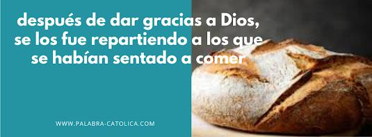 Evangelio del día Domingo 25 de Julio - San Juan 6, 1-15