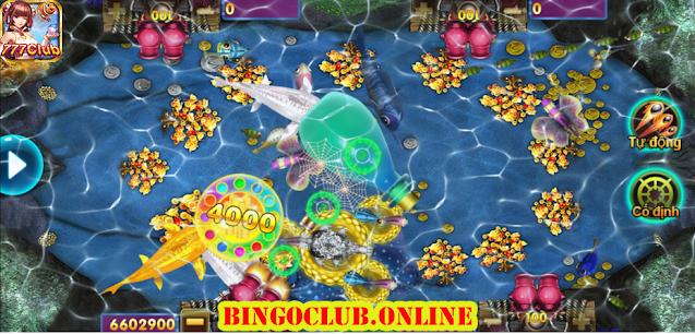 Game cây đồng tiền trong BINGO2