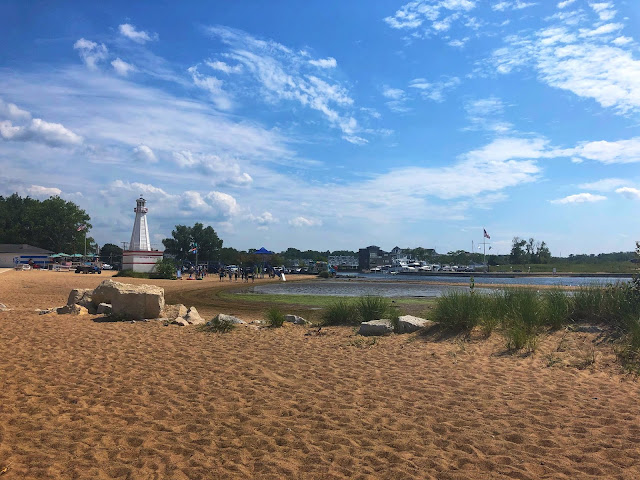 New Buffalo Beach on a spectacular summer day!