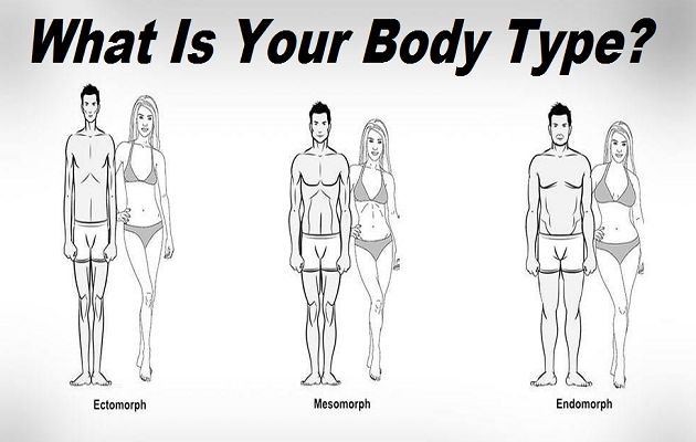 what is your body type ectomorph or mesomorph or endomorph