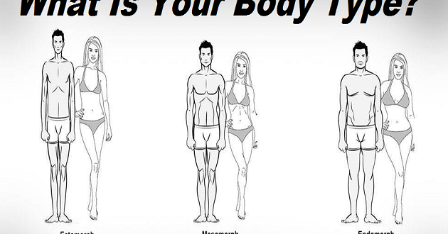 Celebrity body types mesomorphs