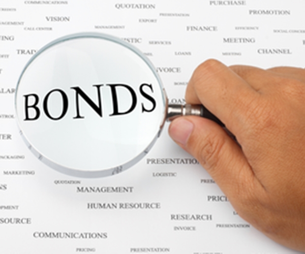Why You Should Own Long Term Government Bonds