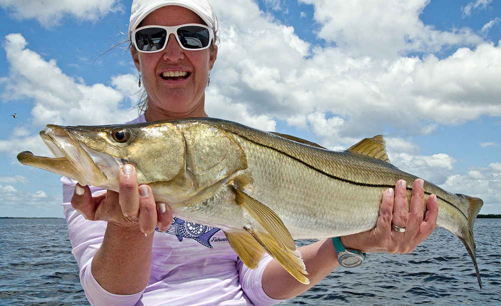 Gulf coast professional guide service fishing report for Snook fishing florida