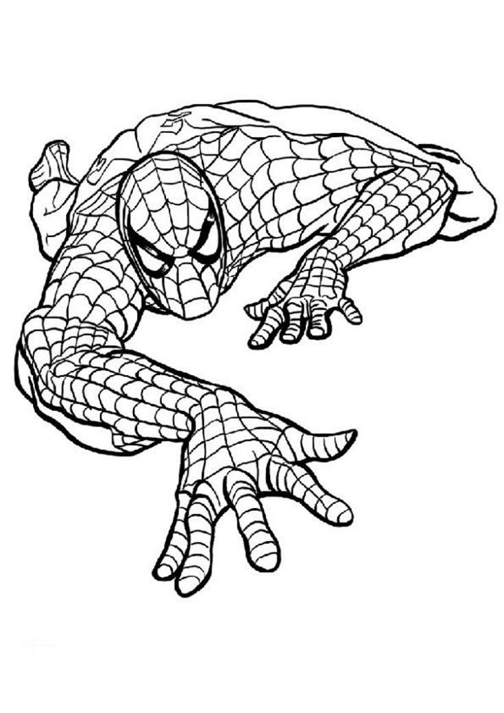 Imagenes Para Colorear De Spiderman