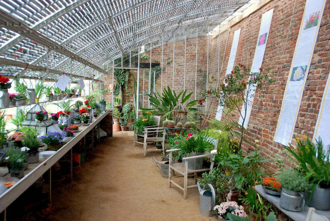 Piccole Serre Da Casa il mondo in un giardino: serre, tnt e altri rimedi per
