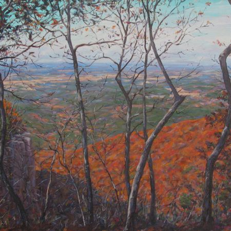 David Mudrinich's exhibition at the Fort Smith Regional Art Museum