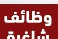 شركة لبيع الأثاث في مسقط – وظيفة شاغرة