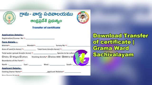 Transfer of certificate