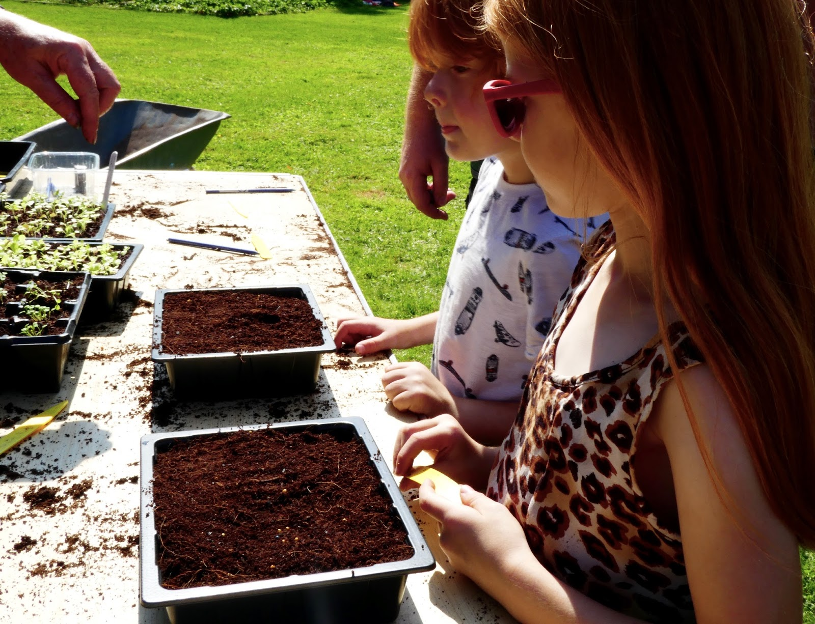 Gibside - A North East National Trust Property that's ideal for Picnics, Adventure Playground fun and beautiful gardens - Walled Garden create your own salad tray activity