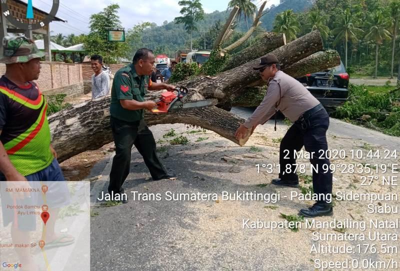 Wujudkan Kamseltibcarlantas Aipda Na'amuddin Singkirkan Batang Pohon dari Jalan