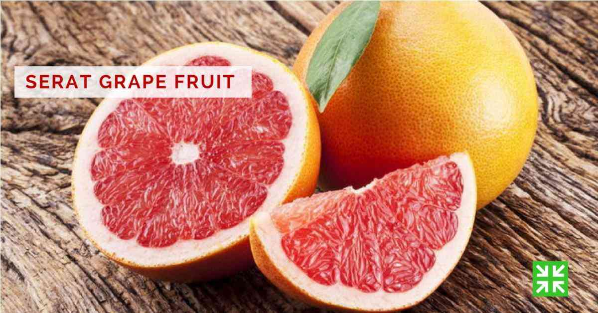 Bisnis FKc Syariah - Serat Grape Fruit