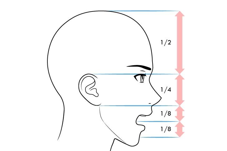 Anime proporsi wajah pria tampilan samping mulut terbuka