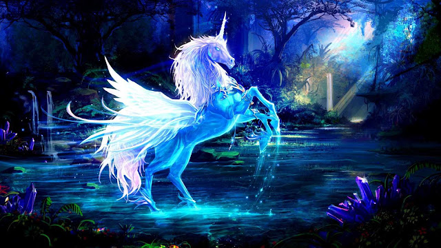 colorful horse wallpaper
