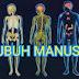7 Bagian Tubuh Manusia yang disukai Bangsa JIN