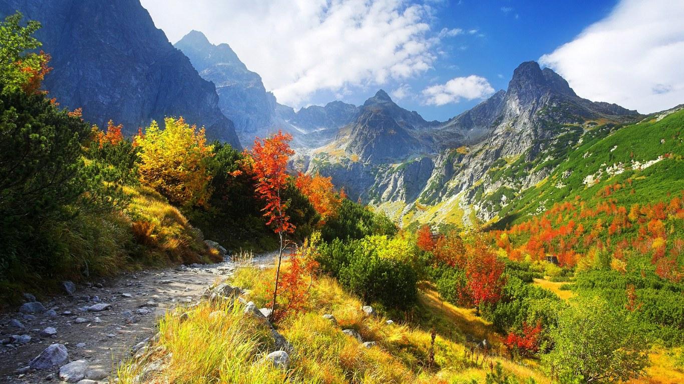 Thanksgiving Wallpapers: Autumn Scenery Wallpaper, Autumn ...