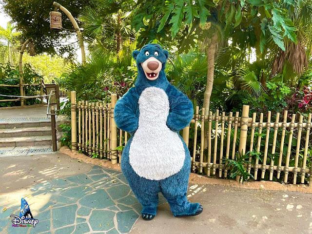 巴魯現身探險世界自拍點, 香港迪士尼樂園, Hong-Kong-Disneyland-Baloo-Selfie-Spot-MeetnGreet-2021