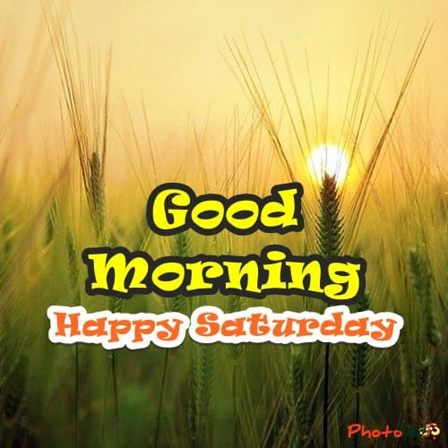 good morning happy saturday images, saturday blessings, morning weekend images, good morning saturday pictures, beautiful saturday morning images, saturday quotes