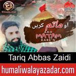 https://humaliwalaazadar.blogspot.com/2019/09/tariq-abbas-zaidi-nohay-2020.html
