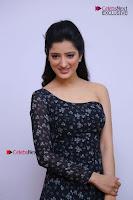 Telugu Actress Richa Panai Stills in One Shoulder Floral Long Dress at Rakshaka Bhatudu Movie Interview  0057.JPG