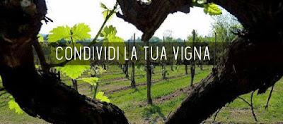 corona virus iniziativa vino