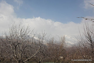 Israel Pictures: Golan Heights 2012