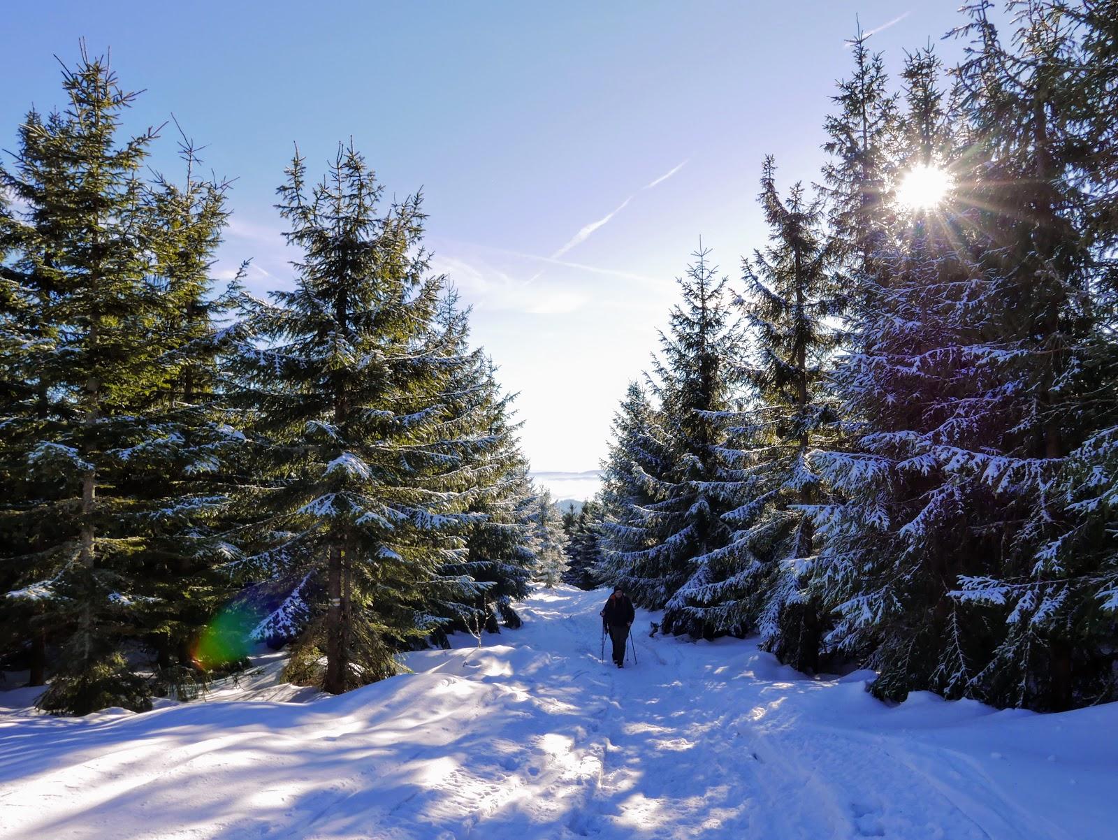 Beskid Żywiecki szlaki zima romanka