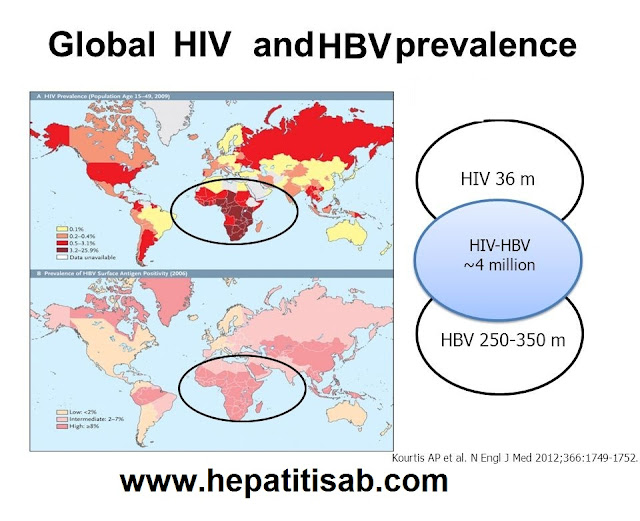 What is HIV/HBV Coinfection Prevalence