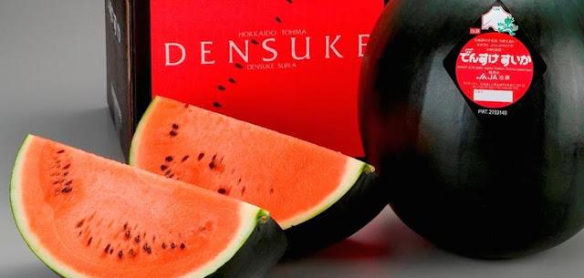 Densuke Black Watermelon adalah semangka paling mahal di dunia