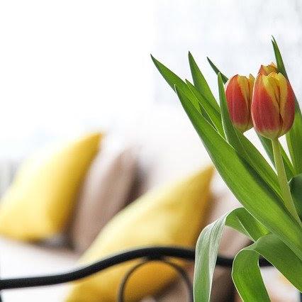 Apartemen Di Jogja Dengan Harga Sewa Terjangkau