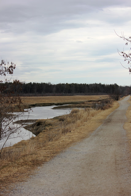 Eastern Trail thru Scarborough Marsh
