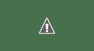2021 Hyundai Sonata N Line First Look