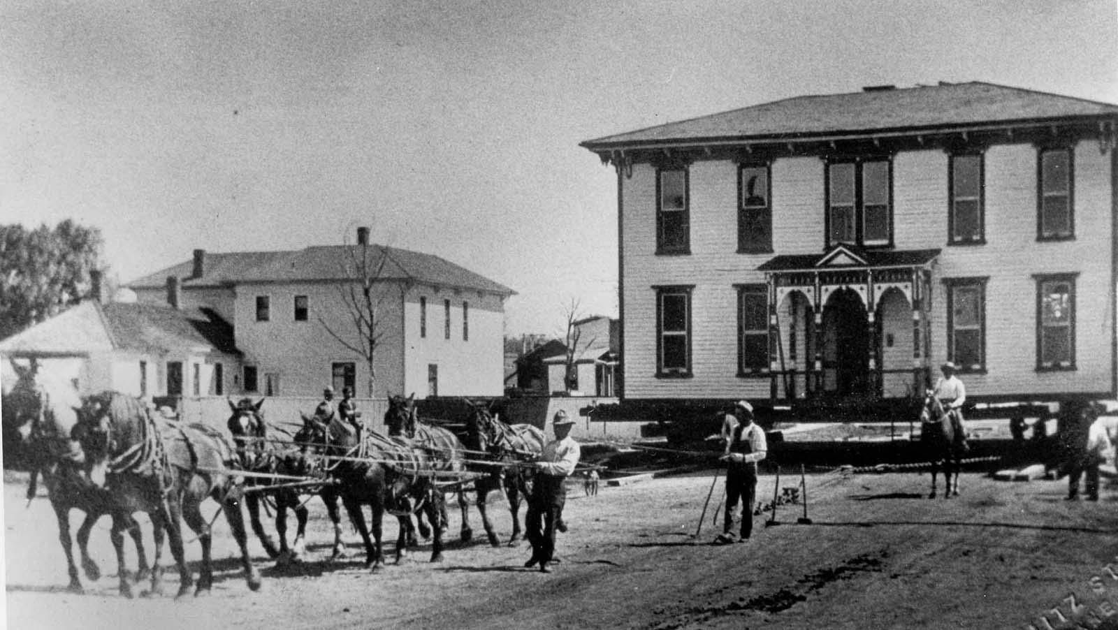 vintage photographs move house horses