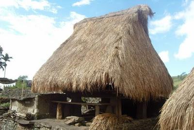 Rumah adat NTT (Rumah mulsalaki)
