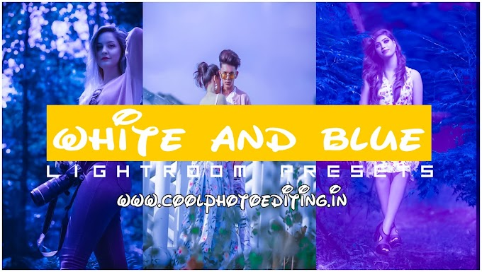 White and Blue Lightroom Presets/Lightroom Mobile Presets Free Download